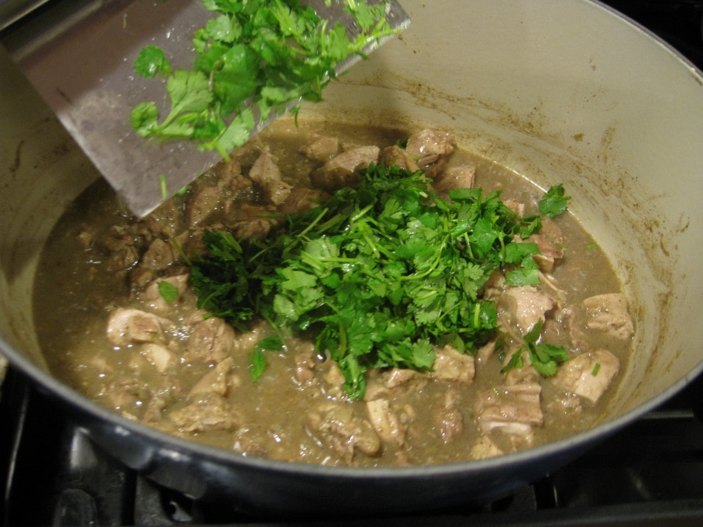 Indian Chicken Stew Ingredients from www.EverydayMaven.com