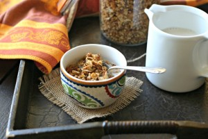 Vegan Coconutty {Grain Free} Granola