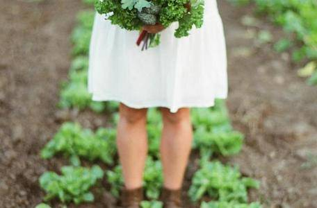 Getting Started with a Vegetable Garden from Sustainable Dish