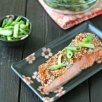 Sesame Hoisin Baked Salmon from www.EverydayMaven.com