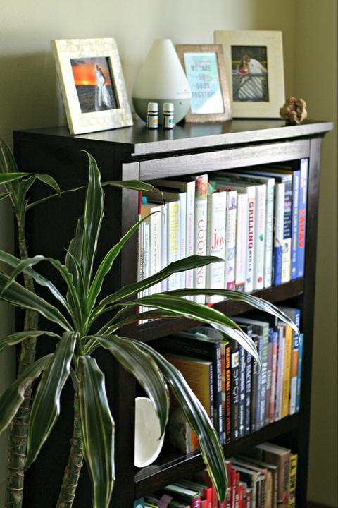 Indoor Plants for Home Office with www.EverydayMaven.com