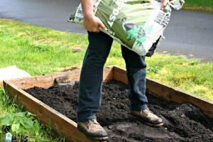 Planting an Organic PNW Vegetable Garden
