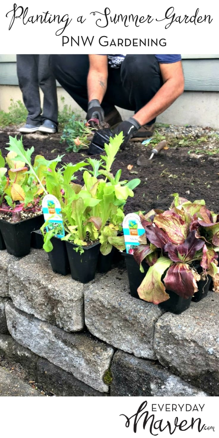 Tips for Planting an Organic PNW Vegetable Garden. Done in partnership with Fred Meyer Garden Center.