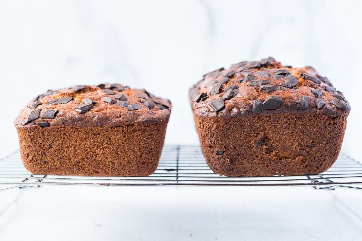 gluten free and all-purpose flour banana bread side by side to show height difference